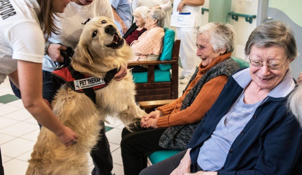 assistenza anziani rimini